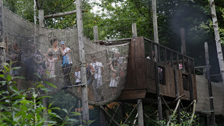 children on rope bridge