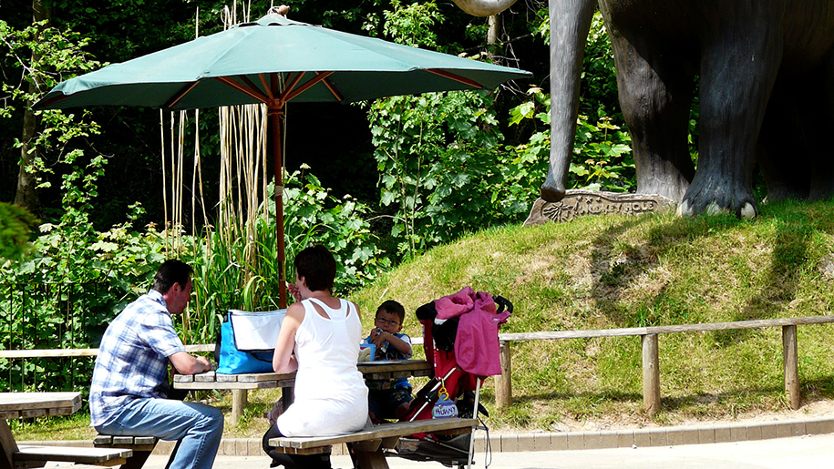 Wookey Hole Picnic table