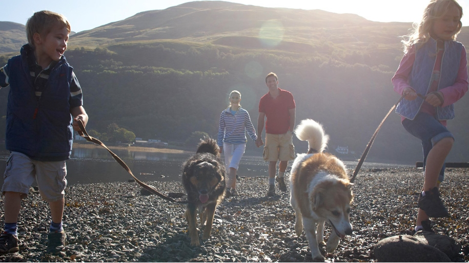 Argyll holidays family walking dogs on beach