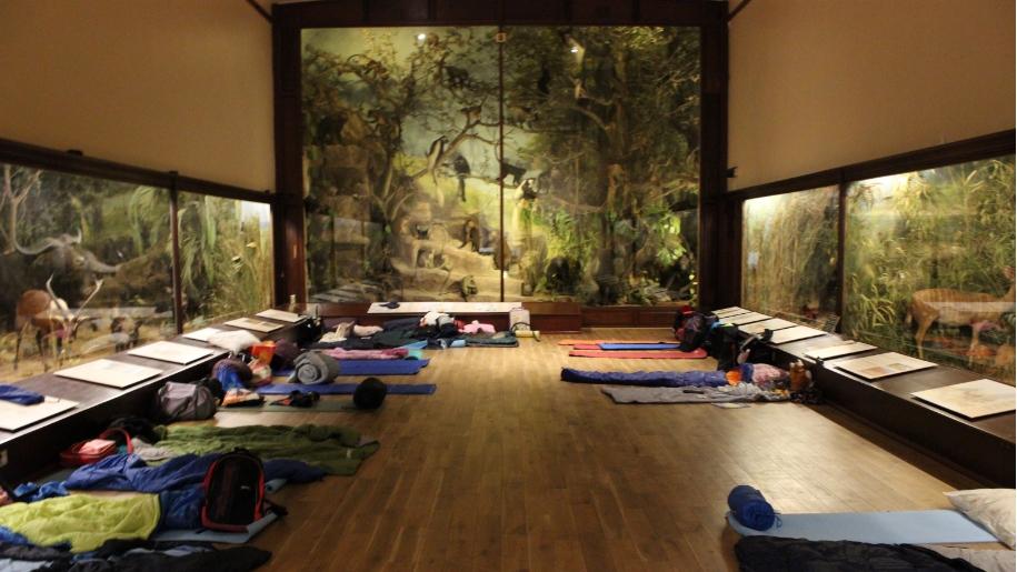 sleeping bags in museum