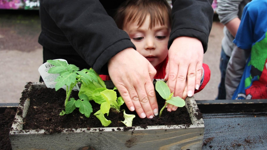 boy planting vegetables
