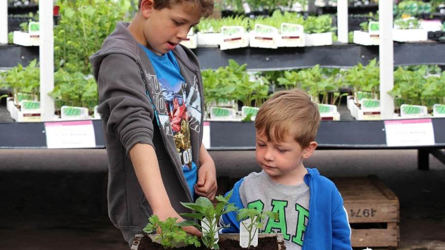 boys and plants