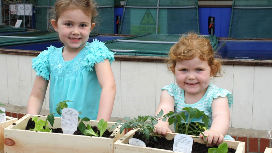 girls planting vegetable boxes
