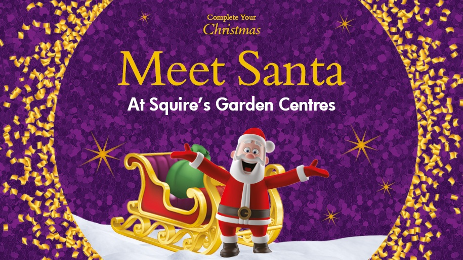 Meet santa at Squires poster