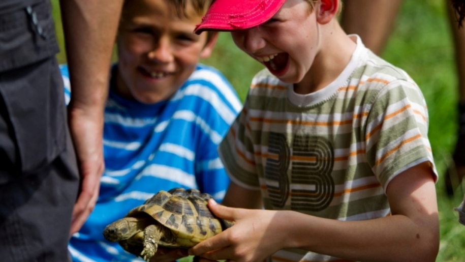 children with tortoise