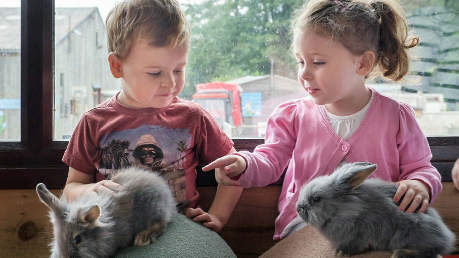 boy and girl holding rabbit and guinea pig