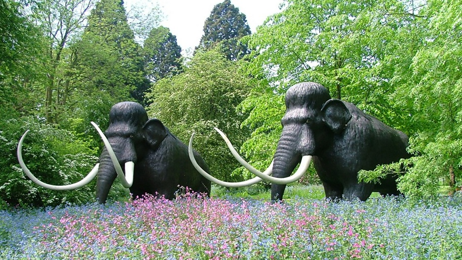 mammoths in spring flowers