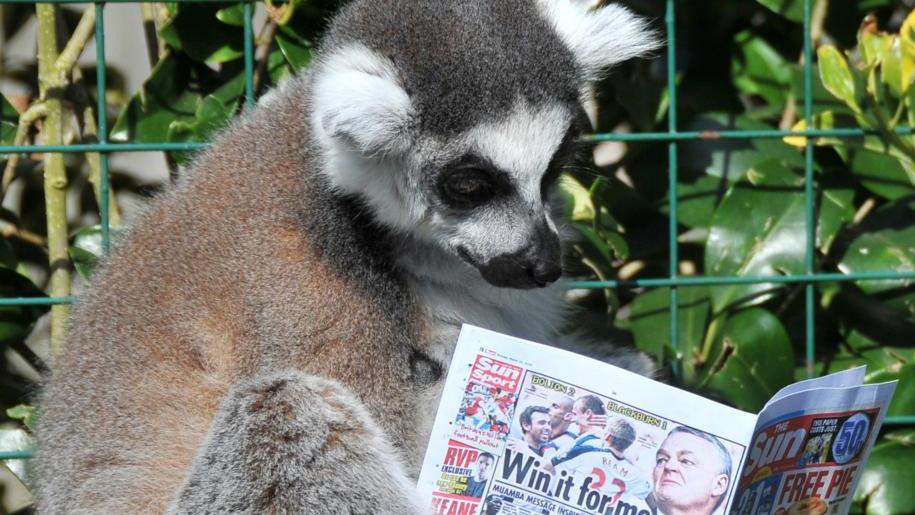 Paradise Wildlife Park Quiz
