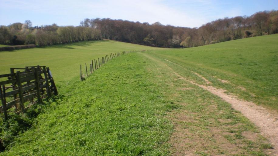 Roald Dahl trail