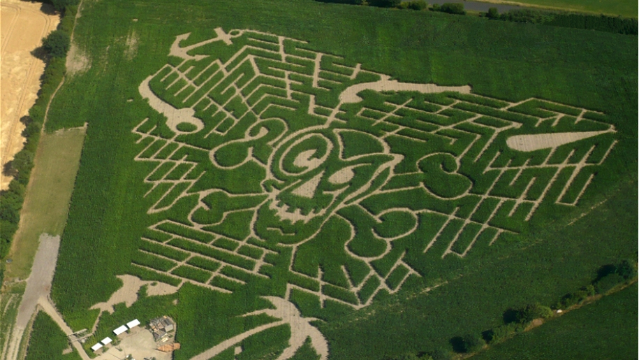 aerial view of maze