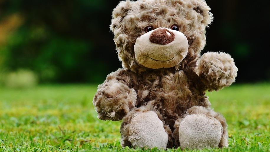 Generic-teddy-bear-2-915px