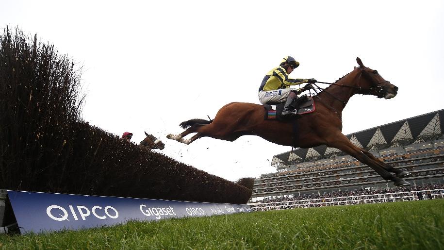 horse jumping at ascot
