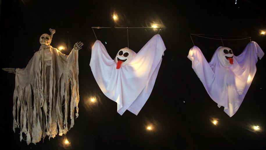 halloween ghosts at birdworld