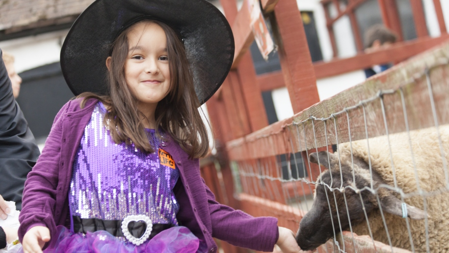 girl dressed as witch feeding sheep
