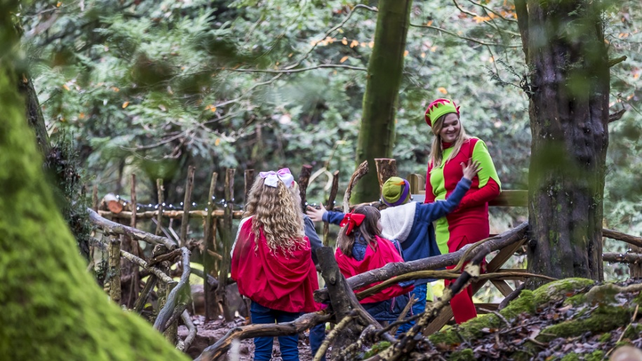 kids wild elf in Puzzlewood