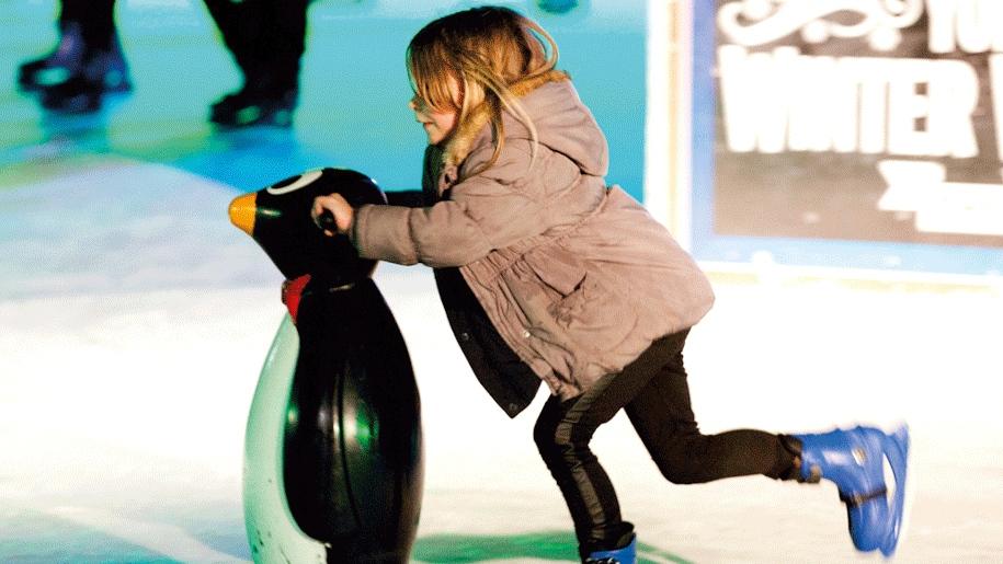 yorkshire winter wonderland penguin