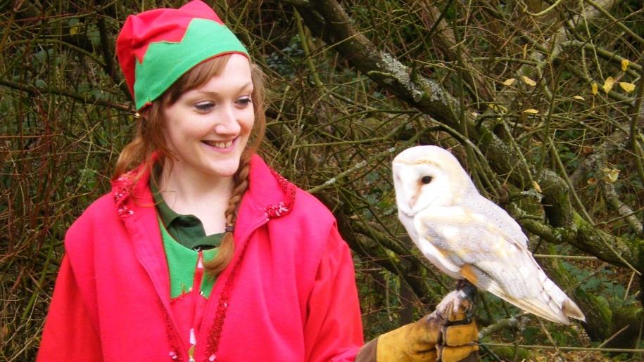 owl and elf at birdworld