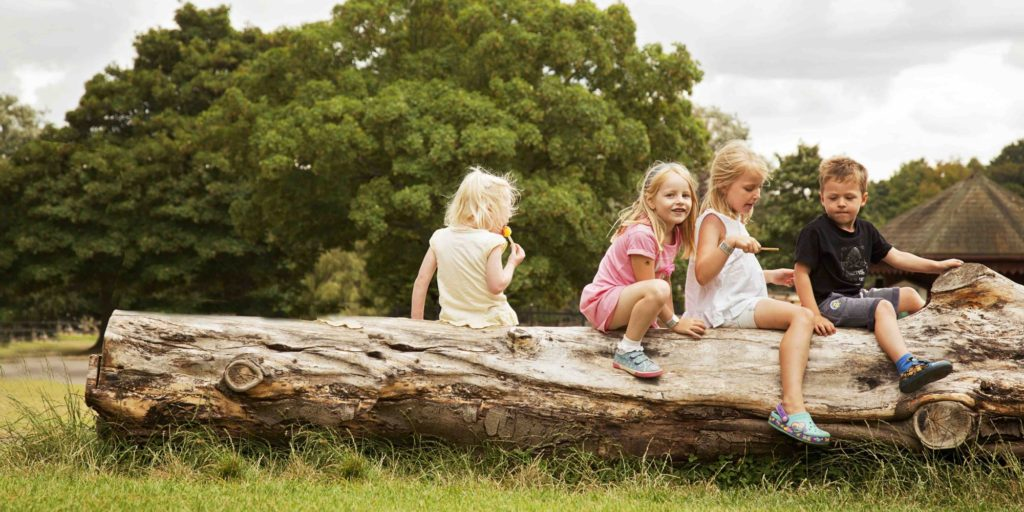 Children sitting on log