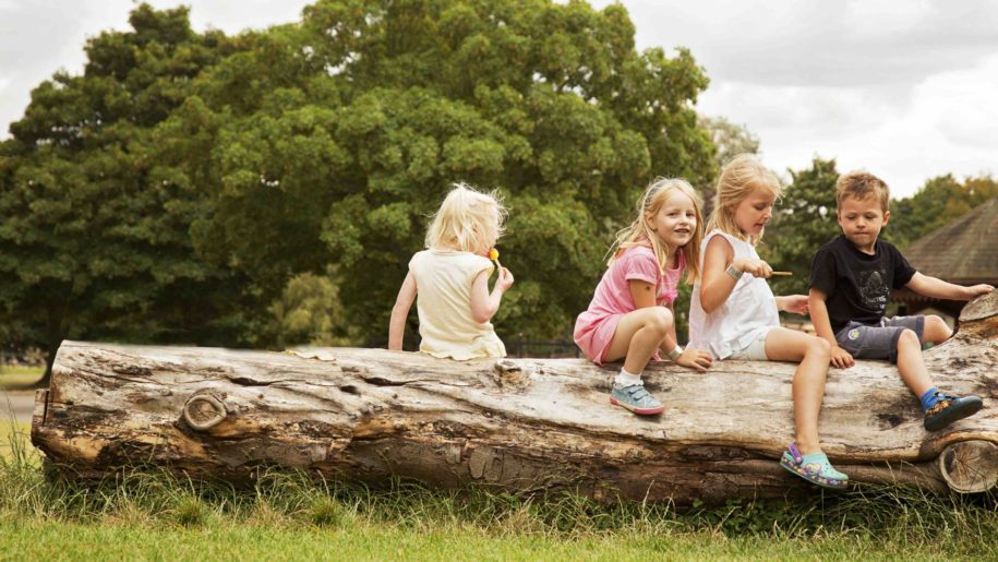 Children sitting on log