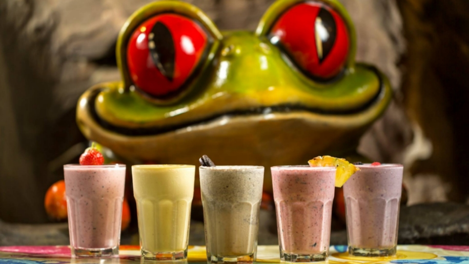 frog and smoothies