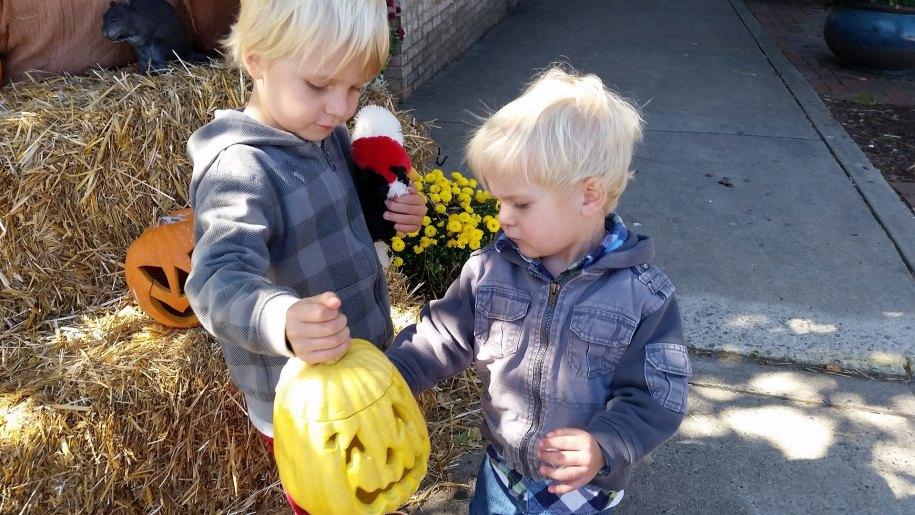 children and pumpkin
