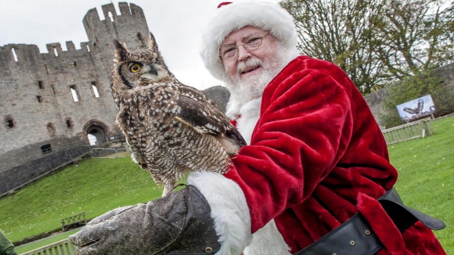 santa with owl