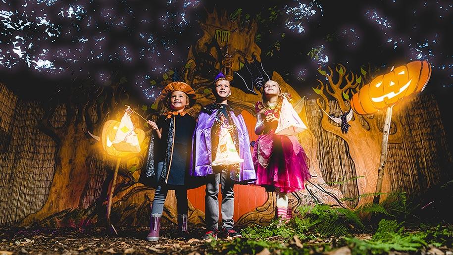 bewilderwood halloween