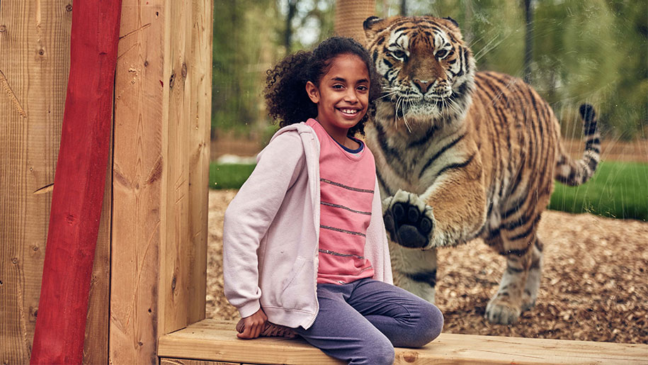 Chessington Resort Girl with Tiger