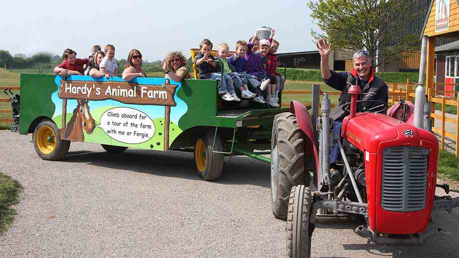 hardys-animal-farm