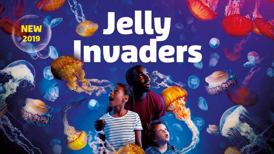 jelly invaders