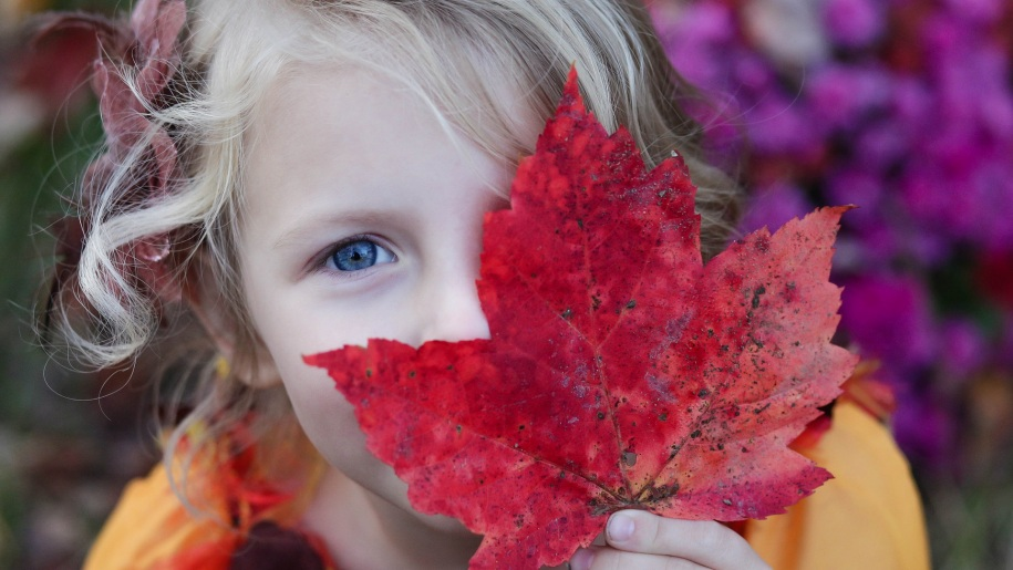 girl holding autumn leaf