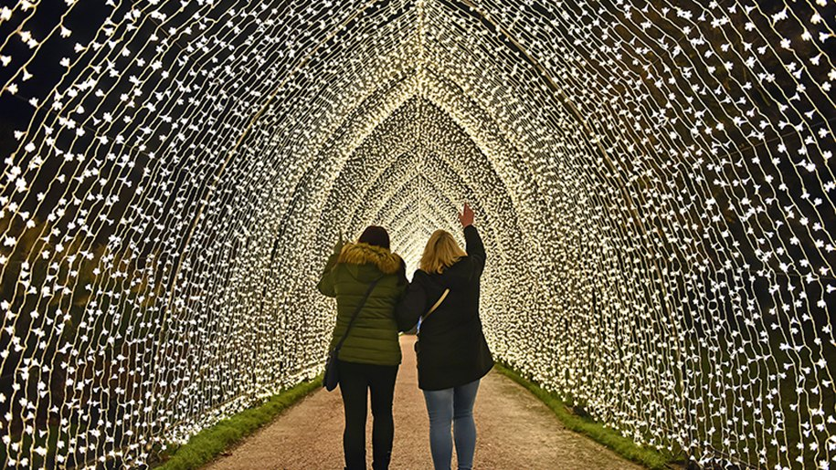 cathedral of light at bedgbury-