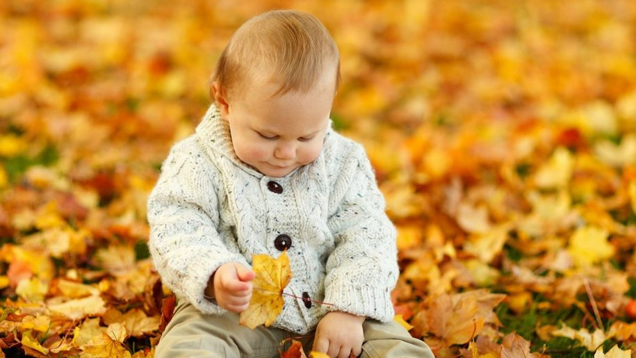 baby holding autumn leaves