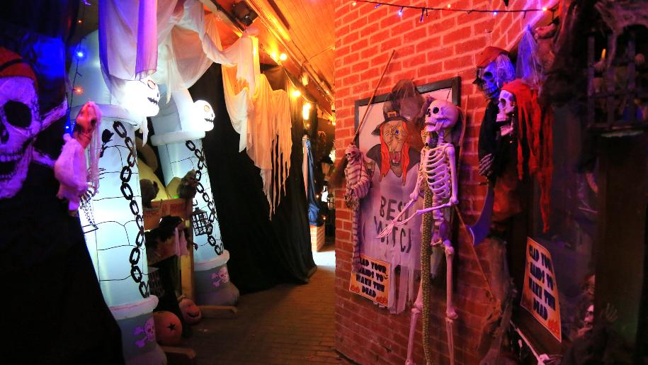 birdworld halloween exhibition