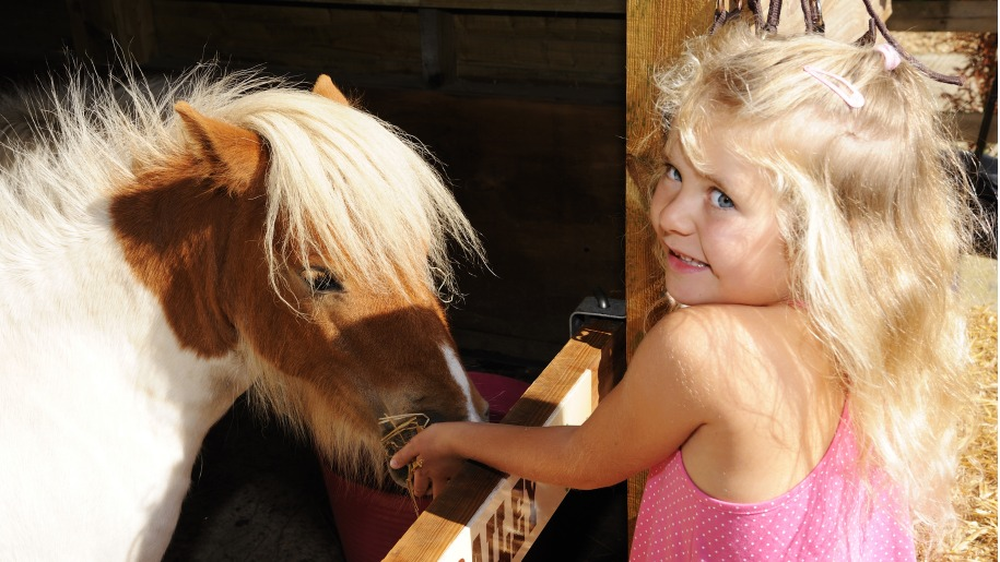 Blonde girl petting a pony