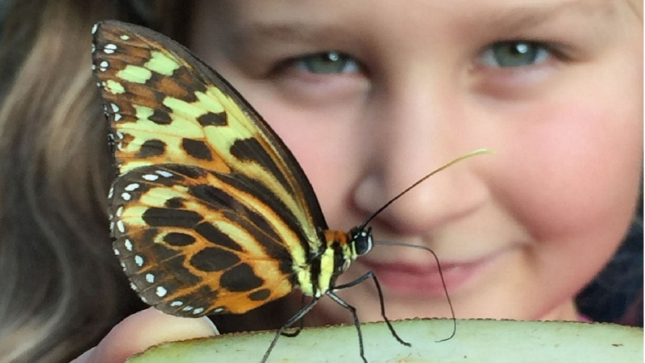 Close up of girl and butterfly