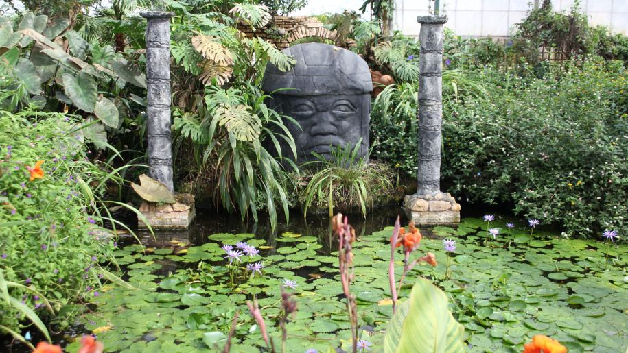 Statue in lily pad pond