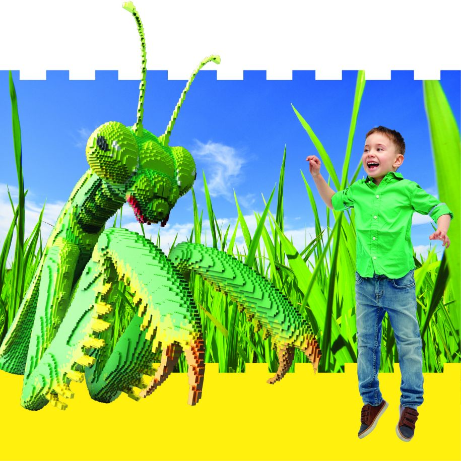 boy pictured with Lego preying mantis
