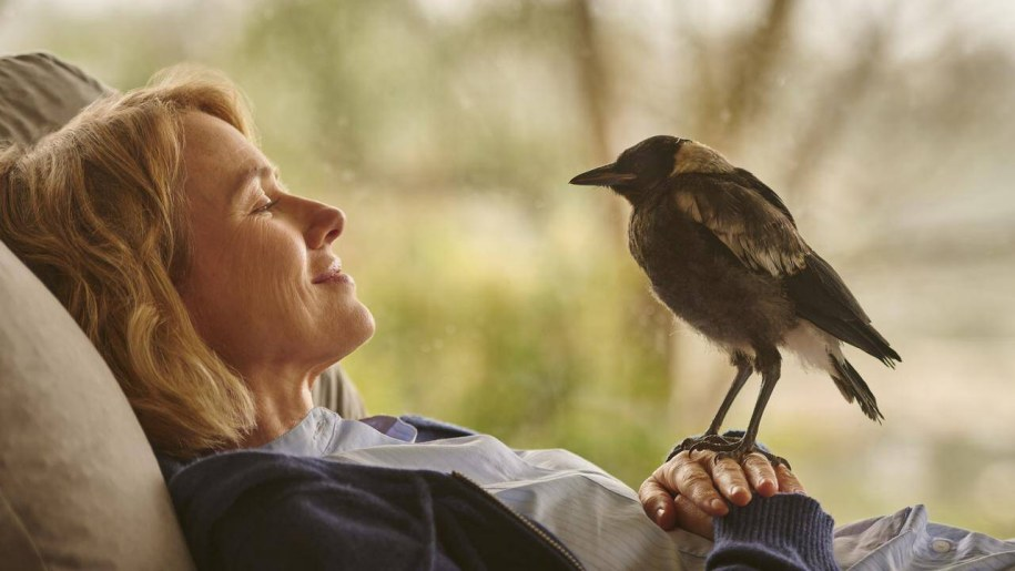 woman with a magpie bird