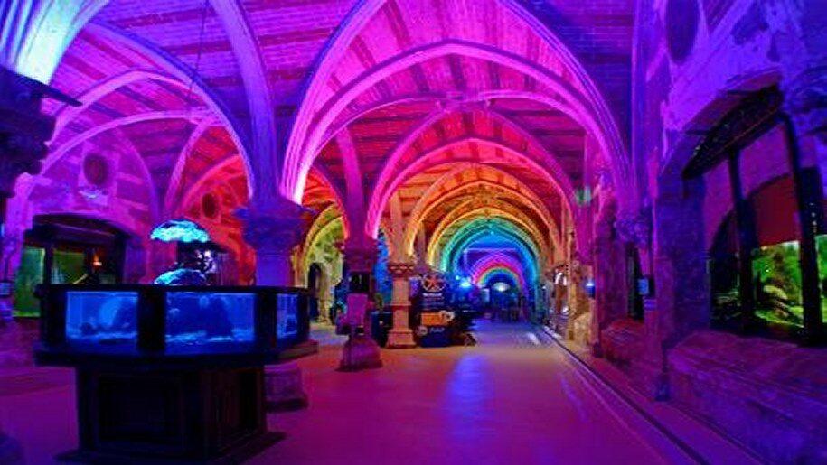 Underneath the arches at Brighton Aquarium