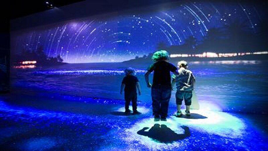 Children in water at Brighton aquarium