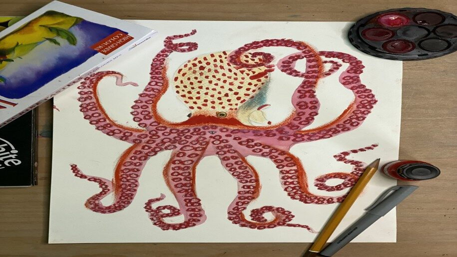 Cygnetss St Ives - drawing and painting of a squid