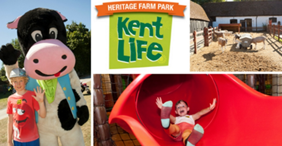 Kent Life - Collage of activities on the farm