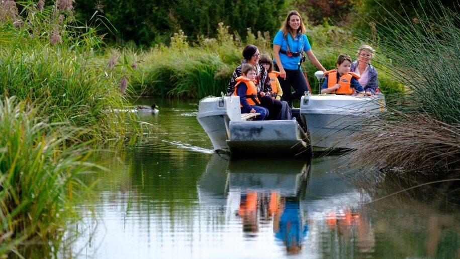 Boat safari at WWT Arundel Wetland Centre