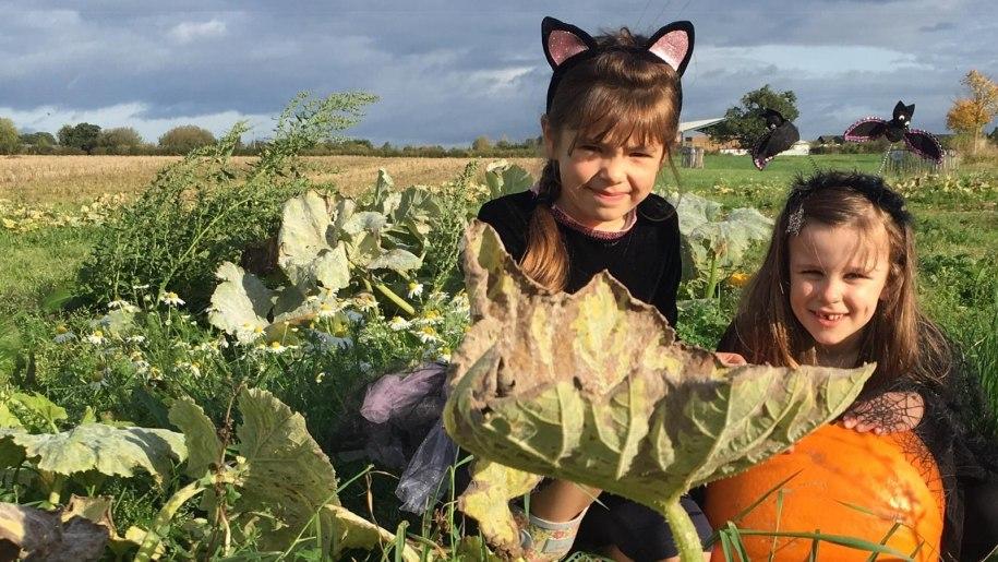 Children in fancy dress with a pumpkin at Lower Drayton Farm