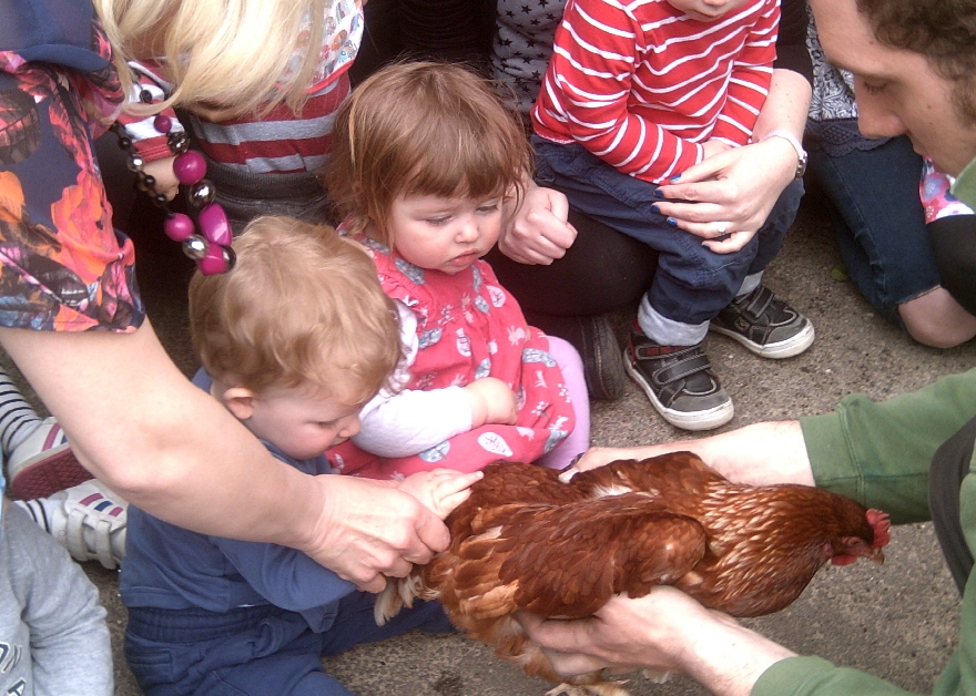 Farmer Gow's kids with chicken