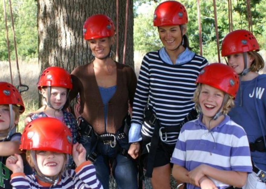 family tree climbing
